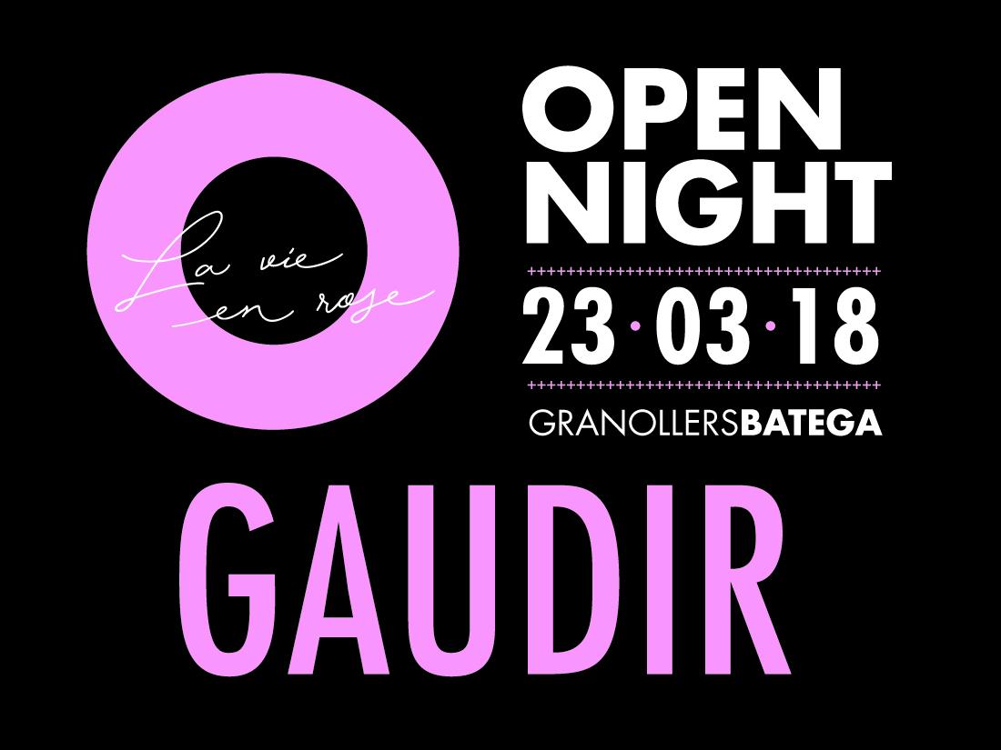 OPENNIGHT_GAUDIR_1100X825